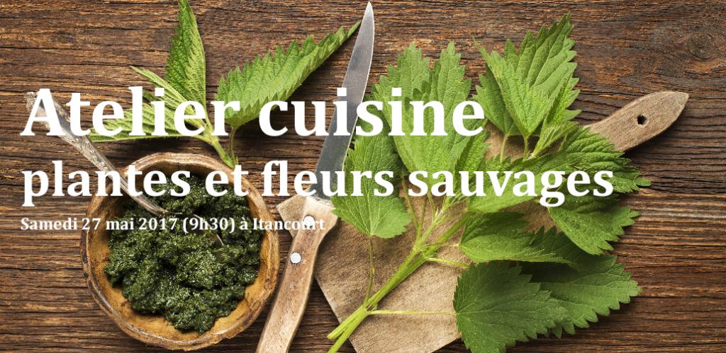 Atelier cuisine plantes sauvages à ITANCOURT le 27 mai 2017
